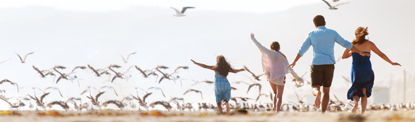 Family of four running on beach with sea gulls.